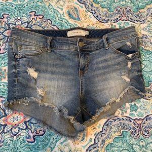 Torrid jean shorts